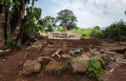 ebola pres de 4900 morts selon le dernier bilan oms