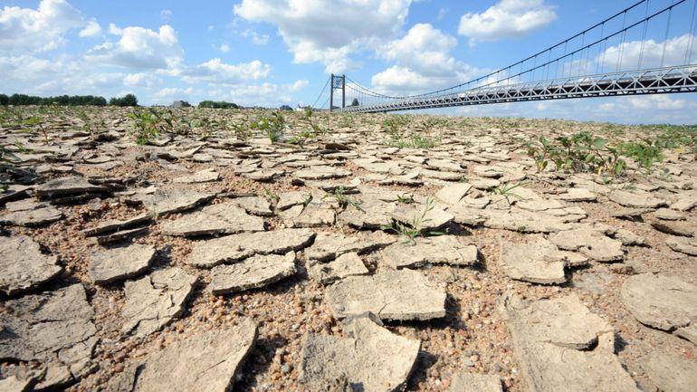 Juillet2019 a été le mois le plus chaud jamais mesuré dans le monde