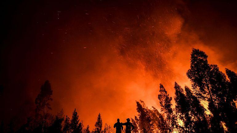 Avions, hélicoptères et un millier de pompiers combattent un vaste incendie de forêt au Portugal