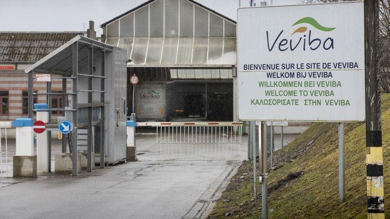 Veviba: le principal sous-traitant a régularisé des travailleurs la veille de la perquisition