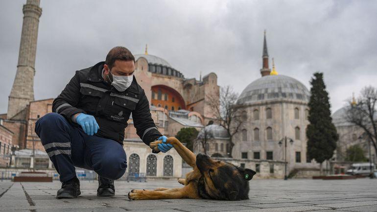 Coronavirus en Turquie: Erdogan annonce un confinement pour les moins de 20 ans en Turquie