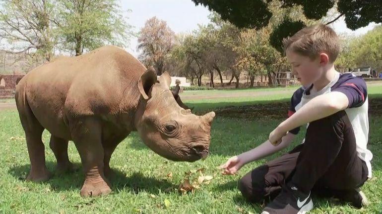 Bébés rhinocéros: le combat d'un jeune garçon en Afrique du Sud