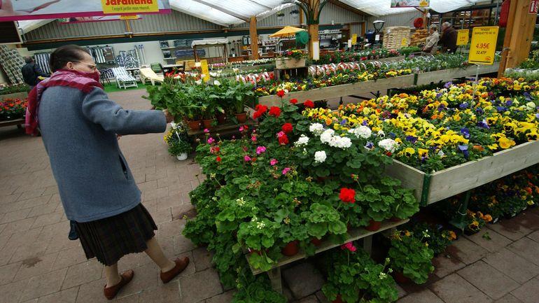 Coronavirus en Belgique: les jardineries dénoncent une concurrence déloyale des magasins d'alimentation