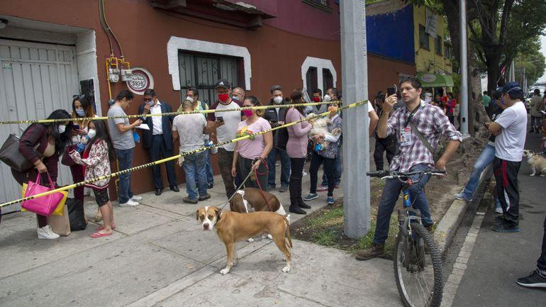 Trottoir qui bouge, arbres qui tremblent... un important séisme au Mexique ce mardi (vidéos)