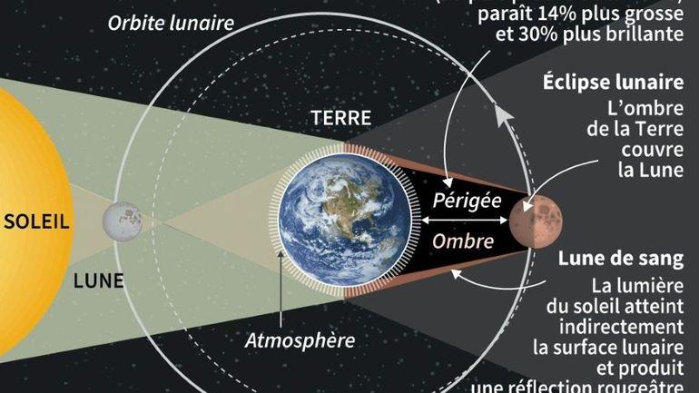 """La """"super Lune bleue de sang"""" pourrait offrir un """"spectacle saisissant"""", selon des astronomes"""