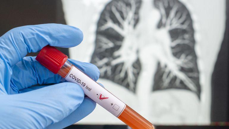 Coronavirus en Belgique: du pic d'avril à la stabilisation de mai, comment la mortalité a évolué