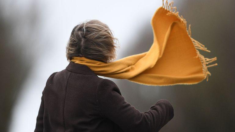 Tempête Ellen : le vent sera moins menaçant ce dimanche que lors de Ciara et Dennis
