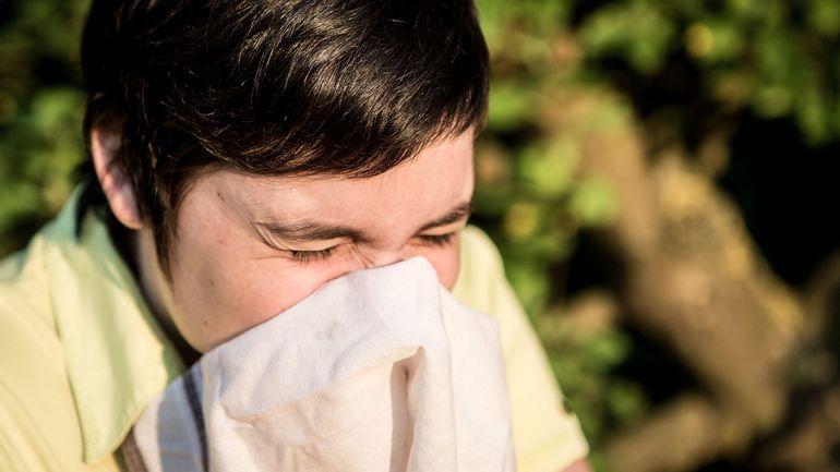 Allergies: la concentration de graminées largement au-dessus des seuils critiques à Bruxelles (et en France)