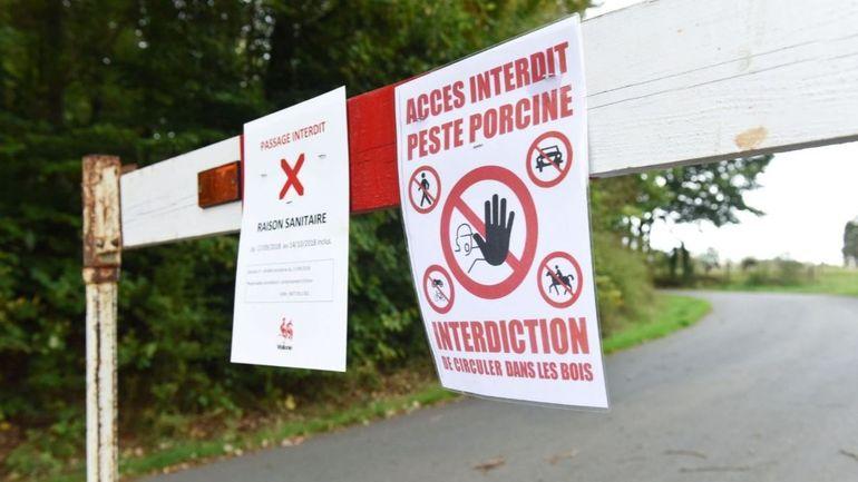 Peste porcine: le chasseur et garde-chasse Arnaud François libéré sous conditions