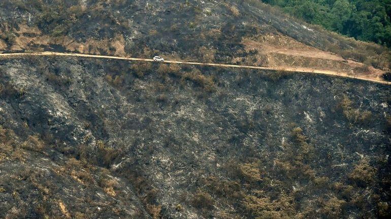 Colombie: plus de 2.200 feux de forêt en 2019, nombre le plus élevé depuis 20 ans