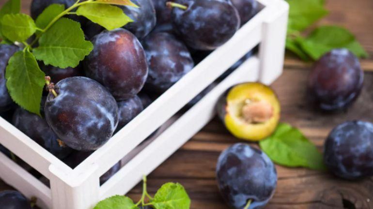 Du clafoutis, oui mais à la prune!